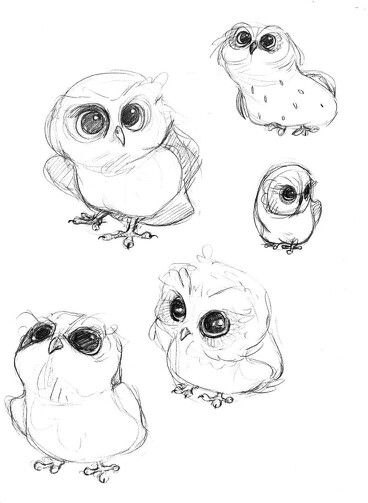 Cute owl love drawing - photo#4