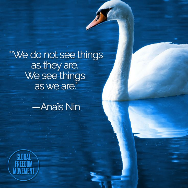 """We do not see things as they are. We see things as we are."" - Anaïs Nin 