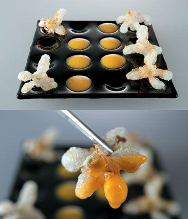 87 best images about Molekular Food on Pinterest Pollo chicken - molekulare küche set