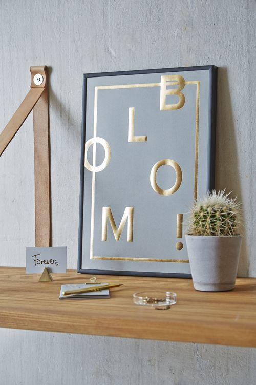 Bloom! Lovely in grey. Shop online. Photocredit: ILMT