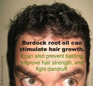 Burdock Root Advantages