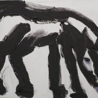 horses_23p