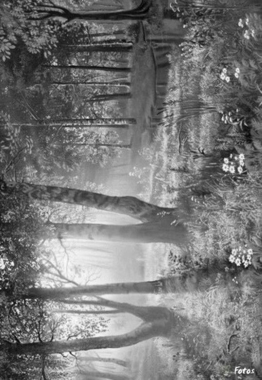 301 Best Coloring Greyscale Scenery Images On Pinterest