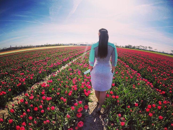 Day 3. Голландия. Тюльпановые поля. Доброе утро всем. Сегодня будет много фото так как тюльпановые поля просто нереальной красоты.  Каждая женщина любит цветы а тем более когда их так много. #eurotour #eurotrip by vika_ritmodance
