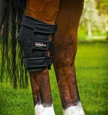 back on track equine love this product!