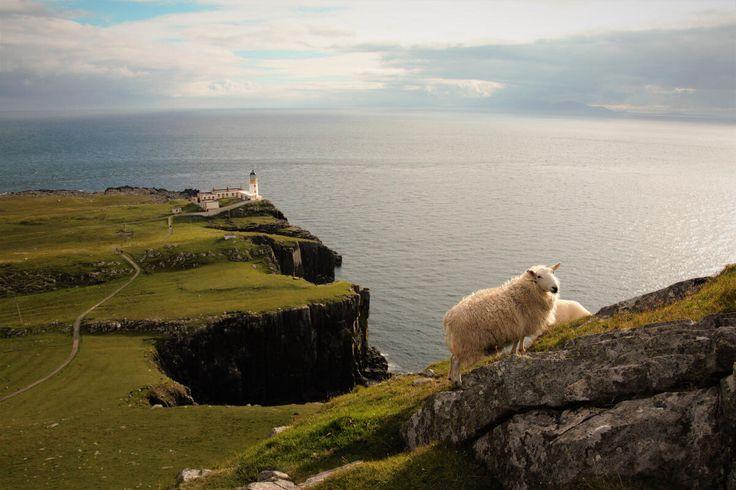 Voyage en Ecosse : direction Isle of Skye  #ECOSSE #SCOTLAND #PONT #ROUTE #phare #nesspoint #mouton  http://www.bien-voyager.com/roadtrip-ecosse-isle-of-skye/