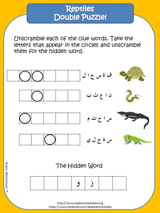 Learn reptiles names in Arabic Double Puzzle http://www.facebook.com/ArabicWorksheets http://www.arabicworksheets.org