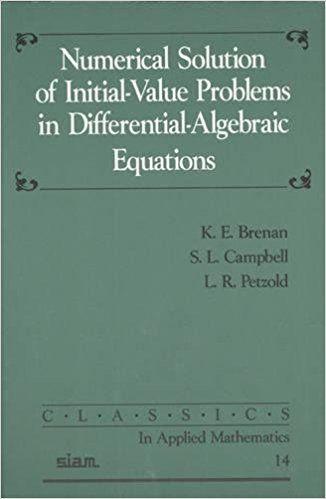 Resultado de imagen de numerical solution of initial