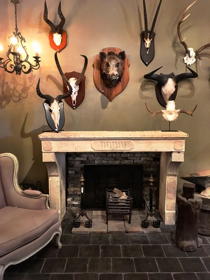 Fireplace, mantlepiece, antique, vintage, game, antlers, interior, hog, living room, fire dogs, wrought iron