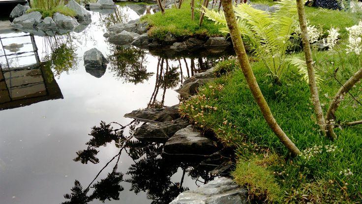 Transition Garden at Bloom Festival, Dublin, 2017