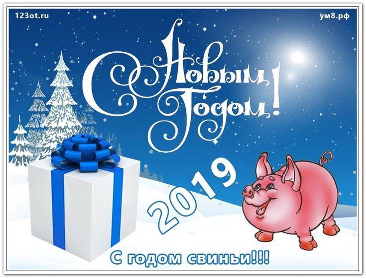 Открытки поздравительные с новым годом 2019 свиньи, четырнадцатилетие