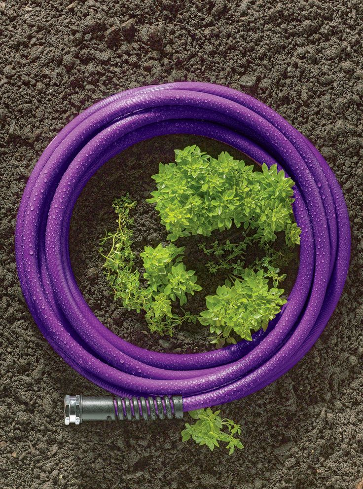 Featherweight Hoses | Lightweight Garden Hose | BPA and Lead Free ... 45% lighter than traditional garden hoses! 25', 50' or 100'  in green, tan or purple  (~$30 - $80 depending on size)