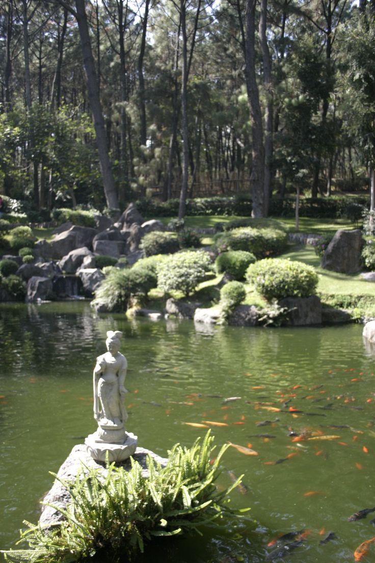 Jard n japones bosque de los colomos guadalajara for Jardin japones