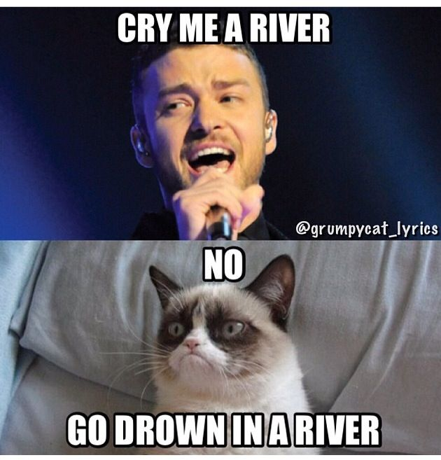 Grumpy Cat sings Cry Me A River by Justin Timberlake ...