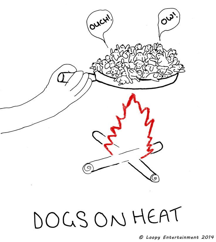dogs on heat - Loopy Entertainment