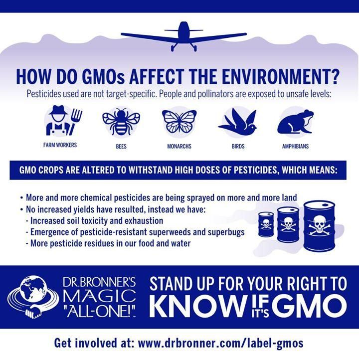 How do #GMOs affect the #environment? @DrBronner breaks it down. I believe we have a #RightToKnow + MUST #LabelGMOs!