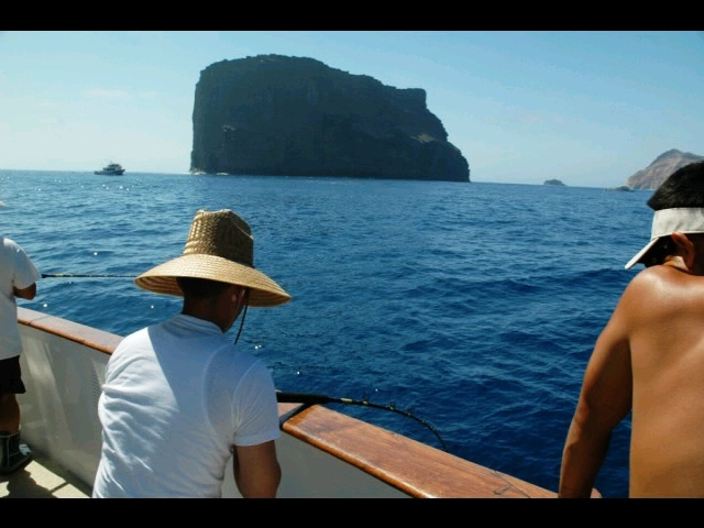 16 best images about long range fishing on pinterest the for Guadalupe island fishing