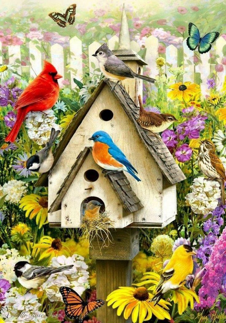 Картинки домиков птиц и зверей