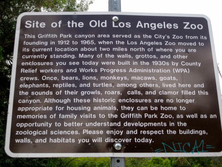los angles zoo The los angeles zoo is located in the heart of the nation's second-largest city  each year 13 million visitors pass through the gates to view a collection.