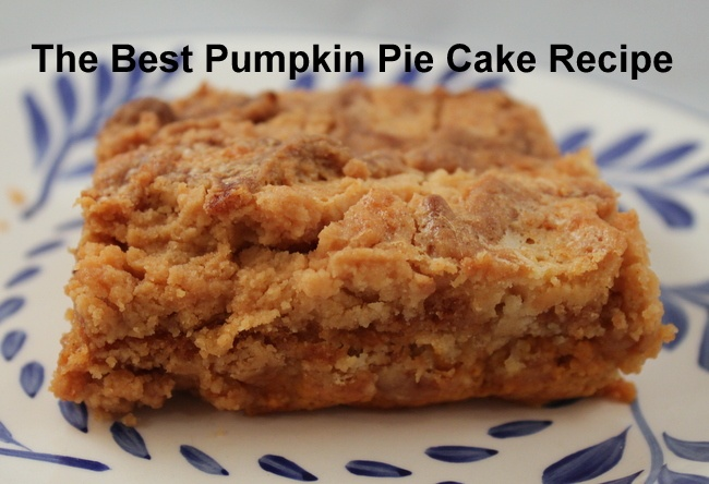 The Best Pumpkin Pie Cake Recipe | Easy Pumpkin Smash