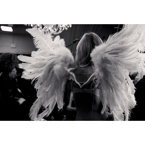 Victorias Secret Angel Wings Wallpaper 1000+ images about Fas...