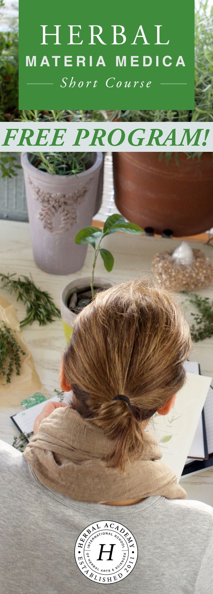 This FREE Herbal Materia Medica Course is designed for herbalists in the making, seasoned herbalists, and those of you not yet sure if this is the right path for you. This program will walk you through the process of studying one herb at a time, teaching you how to create (or add to) your materia medica. The Herbal Materia Medica Course will teach you this simple––yet powerful––study process and help you organize what we are learning into plant monographs for future reference.