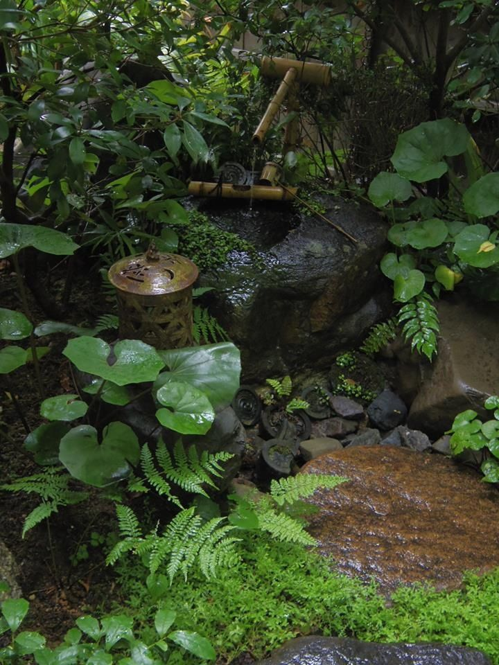 Japanese Zen Garden Water 150 best tsukubai, suikinkutsu & chuzubachi images on pinterest