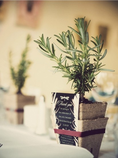 Great idea for a functional gift at a wedding reception or as a party favour! Herbs or flowers <3