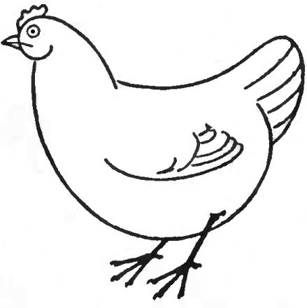 How to Draw Chickens & Hens with Easy Step by Step Drawing ...