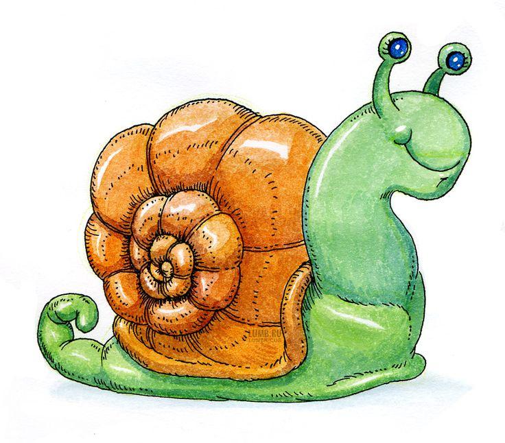 Картинка с изображением улитки для детей