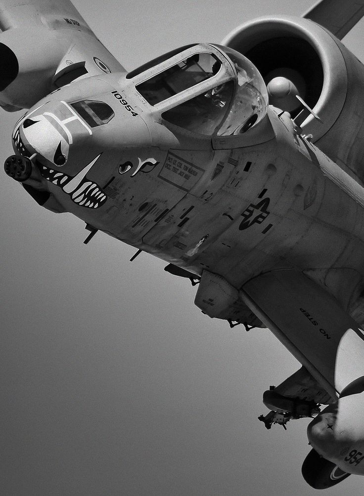 A10 Warthog. Had 3 of these fly over my head training in upstate new york. Nearly brushing the treetops.