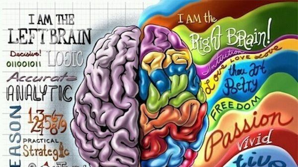Drop the Left or Right Brain Score and Get the Job Your Whole Brain Likes