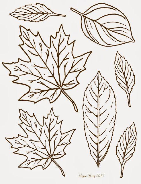 Unique leaf patterns ideas on pinterest