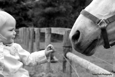 September Photo Contest: Black & White: Cbc Photo, Horses Specialmo, Photo Contest, September Photo, Hors Specialmo, Moments Photo