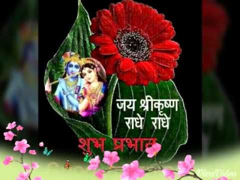 Good Morning Wishes In Hindi,Good Morning Greetings,Messages,Images,SMS,Good Morning WhatsApp video - YouTube