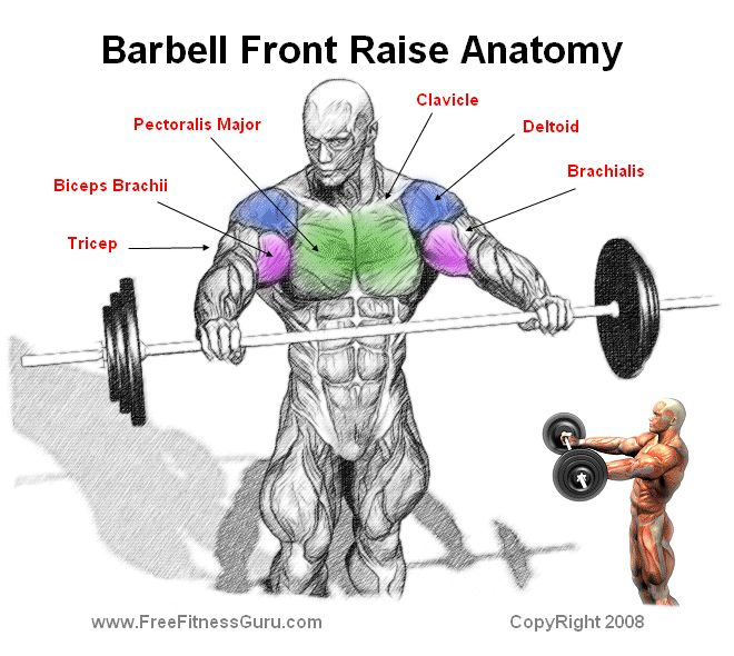 barbell front raise fitness motivation inspiration fitspo