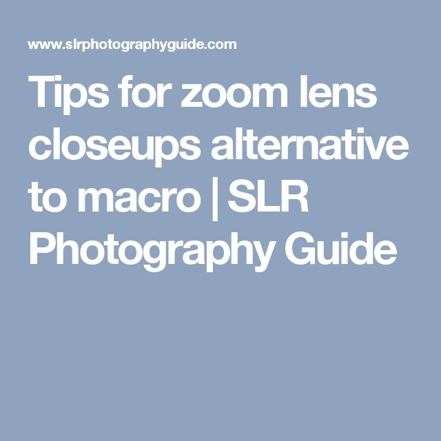 Tips for zoom lens closeups alternative to macro | SLR Photography Guide