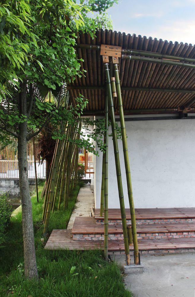 El jard n de bamb baoxin yang bamb pinterest - Bambu para jardin ...