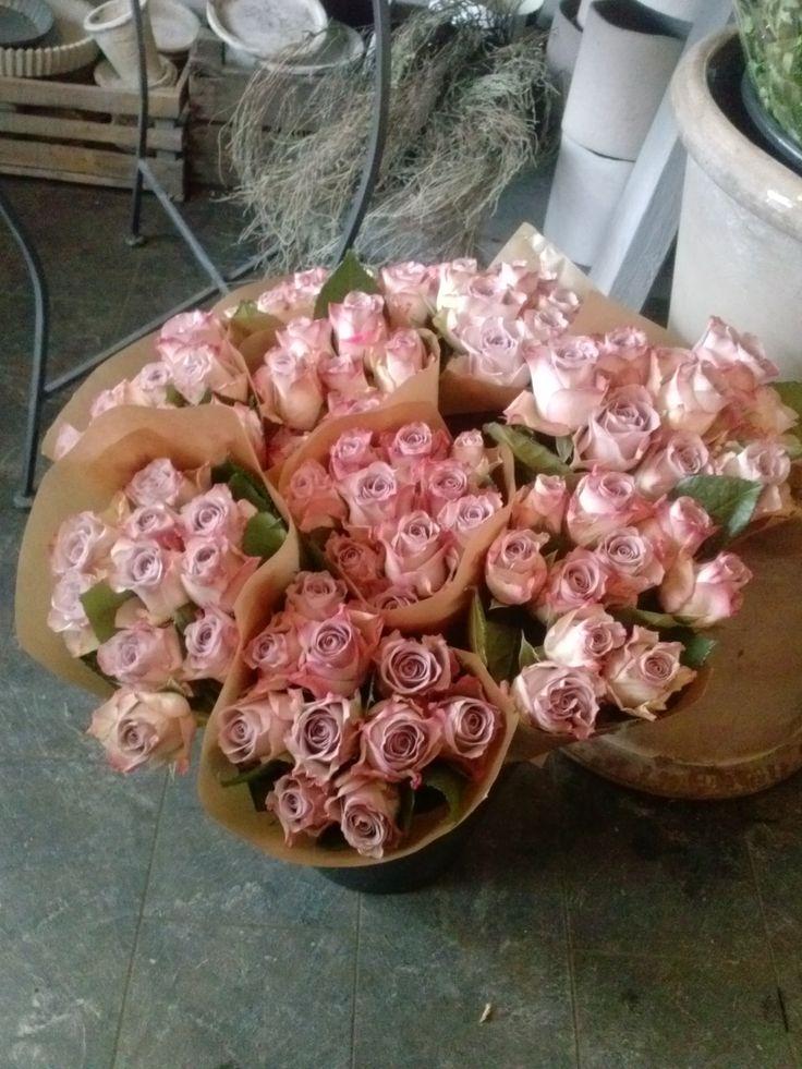 Pakket roser