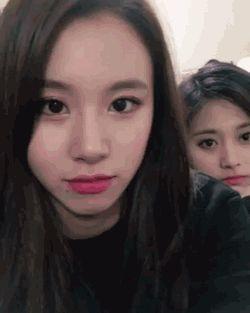 Chaeyoung and Tzuyu
