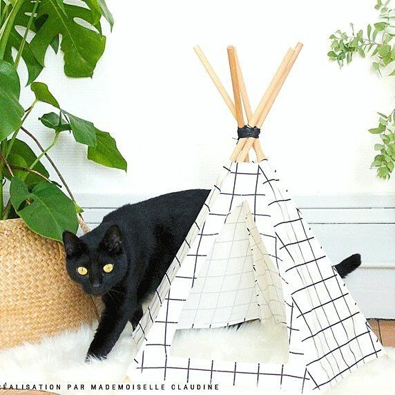 DIY cat tipi cats