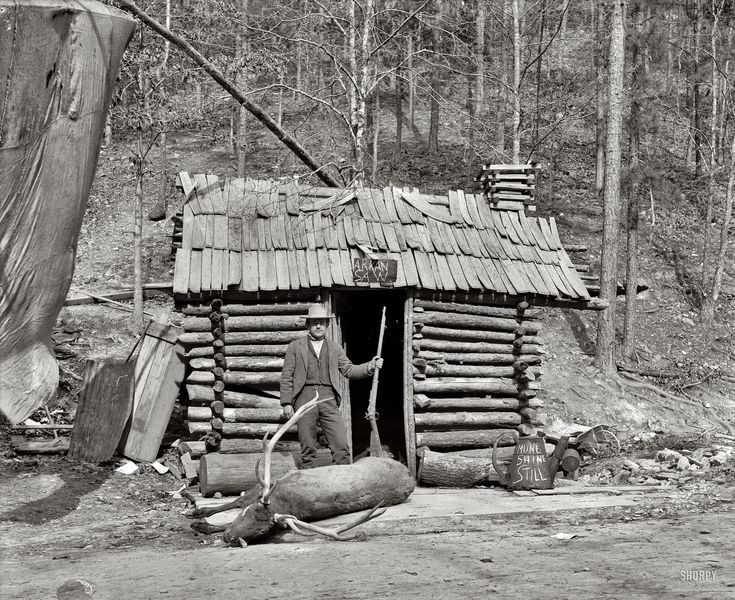 """Hot Springs, Arkansas, circa 1901. """"McLeod's cabin, Happy Hollow."""" A further note: """"Possibly associated with Norman E. McLeod, photographer, and menagerie."""" 8x10 glass negative, Detroit Publishing Company. Shorpy Historical Photo Archive :: Happy Hollow: 1901"""