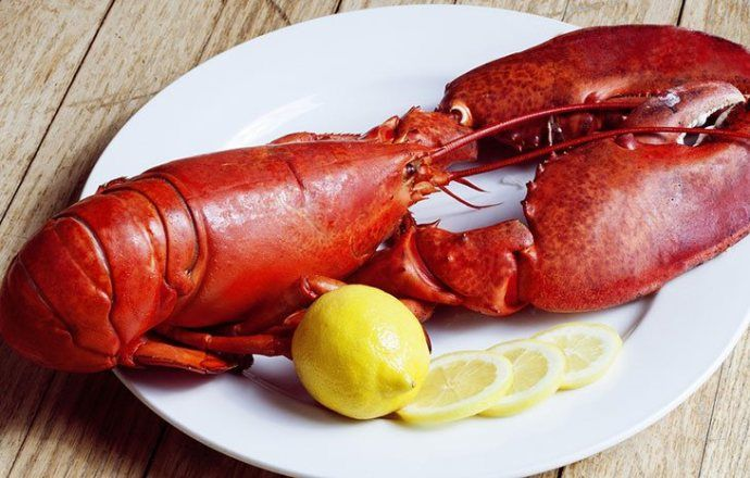 New To The World Of Lobsters And Don T Know Where To Start We Have The Best Lobster Preparation Tips For Beginners Cl In 2020 Lobster Dishes Fancy Dishes Food Hacks