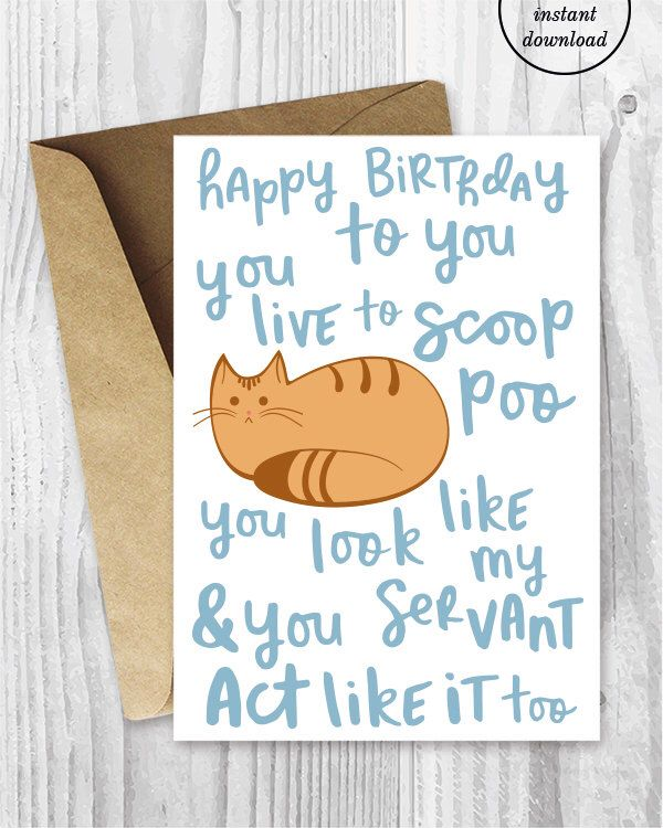 Funny Birthday Song Card from the Cat Printable, Funny Happy Birthday Poem Card, Ginger Cat Digital Card, Orange Cat Instant Download by MiumiCatPrintables on Etsy https://www.etsy.com/listing/465302759/funny-birthday-song-card-from-the-cat