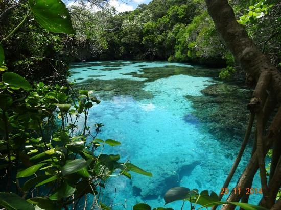 THIS IS A MUST!!  Natural aquarium - Mare Island, New Caledonia