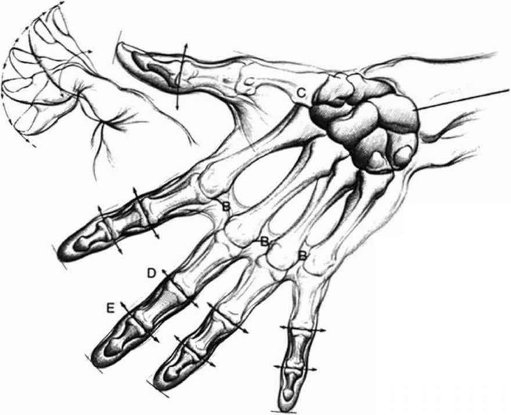Pencil Sketching Tutorials  Figure Drawing Step by Step Lessons  Learn How To Sketch
