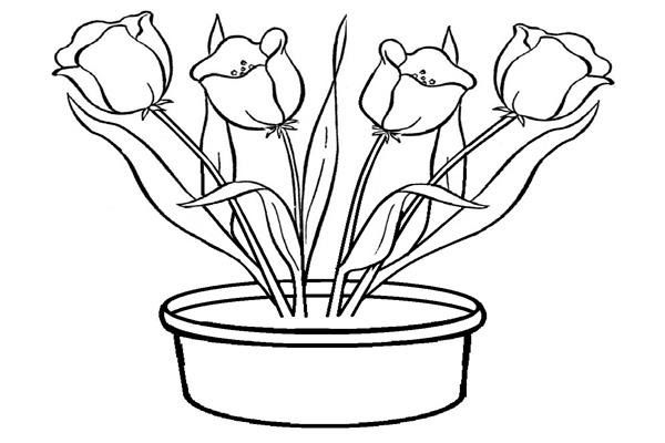 17 Gambar Bunga Cantik Untuk Diwarnai Gambar Untuk Mewarnai Bunga Gambar Mewarnai Download Cara Menggambar Taman Bunga Menggamba Gambar Bunga Gambar Bunga