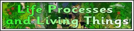 Science Teaching Resources, Life Processes and Living Things