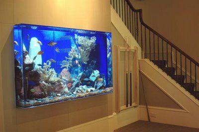 Built in saltwater aquarium