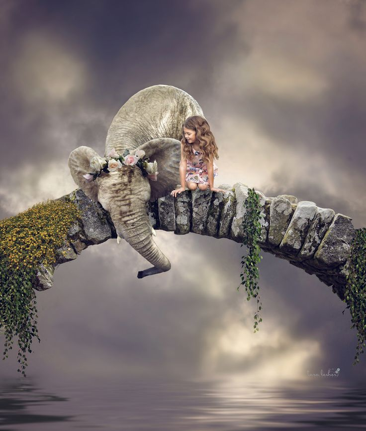 Best Adobe Images On Pinterest Photoshop Ideas Adobe - Photographer uses photoshop to create surreal dreamy composite images